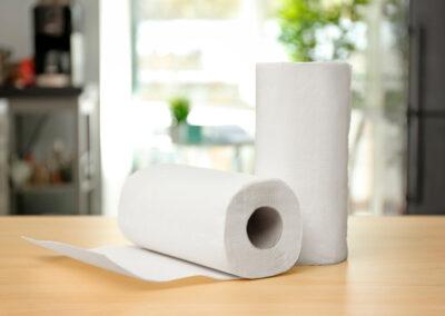 René Millaret Internacional productos terminados de Tissue