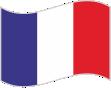 René Millaret Internacional